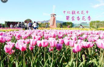 2016 02 28 181752 340x221 - 中社觀光花市,鬱金香花季綻放至3月下旬~