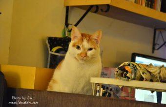 [台中]巷子有貓--逢甲商圈內的深夜食堂,巷弄內的無菜單料理@逢甲 文華路 西屯區