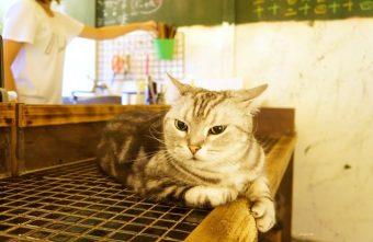 2016 09 09 124048 340x221 - 台中逢甲 巷子有貓無菜單料理 西屯區巷弄美食 寵物餐廳 需預約