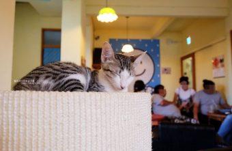 浪浪別哭-黎明新村裡的流浪動物中途餐廳.可愛毛小孩陪你下午茶