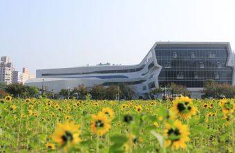 國立公共資訊圖書館-到台中圖書館看書順便賞花拍照.復興建成營區空地變身繽紛花海