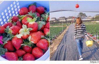2018 02 25 184849 340x221 - 台中也能採草莓囉,就在潭子草莓世界!