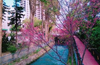 2018 02 27 094513 340x221 - 賞櫻免塞車 市區公園還有小橋流水也很美