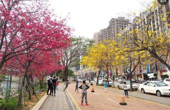 2018 03 09 164823 340x221 - 一次能捕捉到盛開的櫻花與黃花風鈴木耶~市區內賞花小確幸~