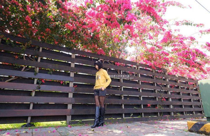 桃紅浪漫九重葛花牆點綴了公車站.等車也很唯美