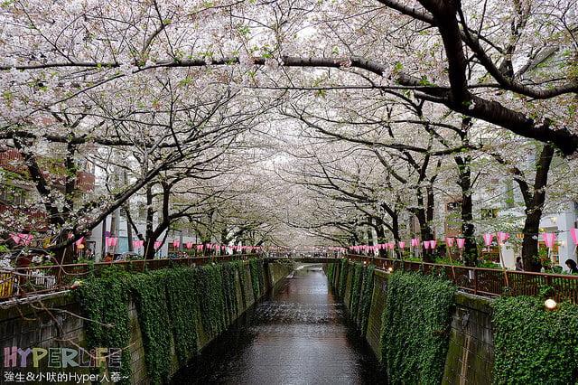 2018 05 21 142400 - 2018東京景點│台中直飛日本東京旅遊景點攻略懶人包