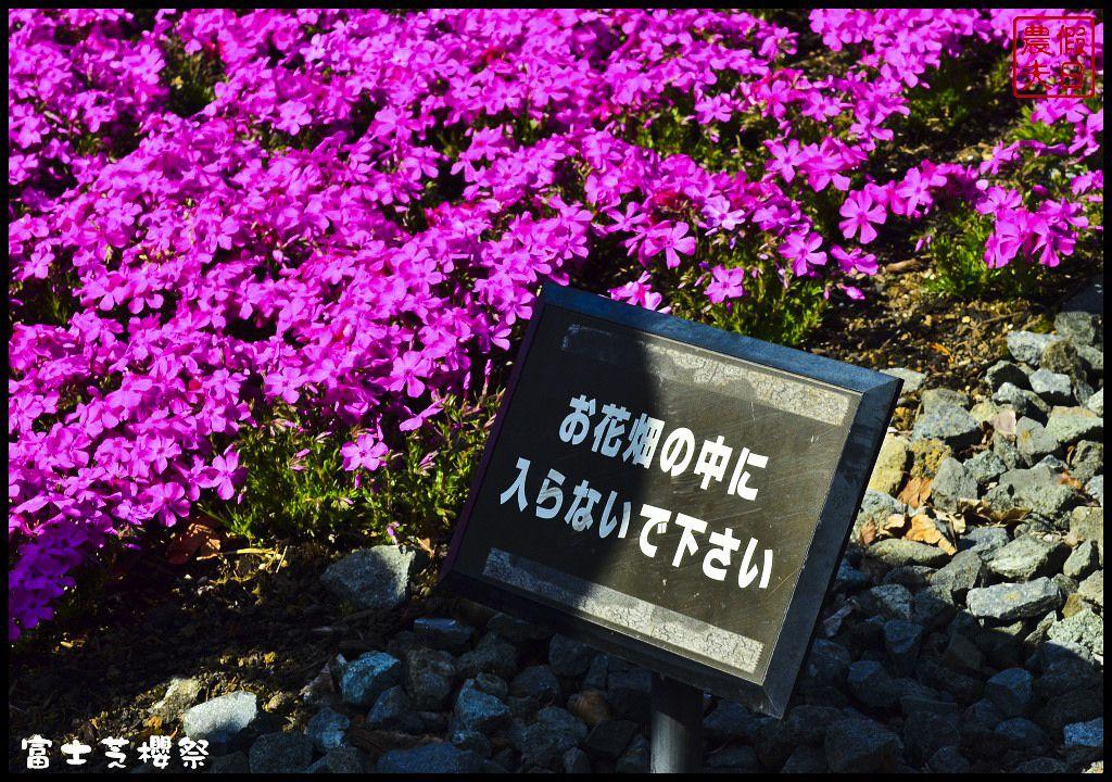 2018 05 21 150740 - 2018東京景點│台中直飛日本東京旅遊景點攻略懶人包