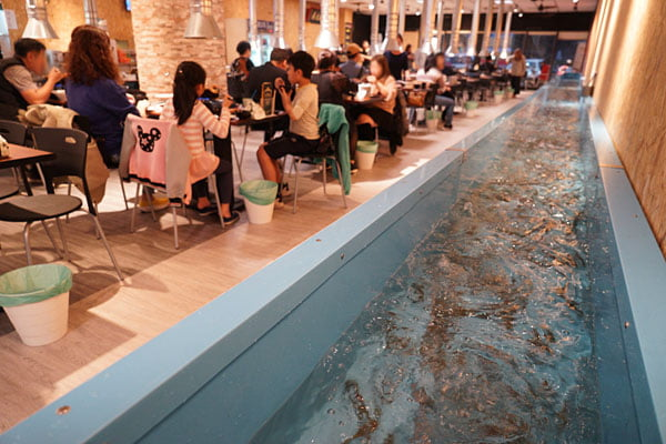 2019 01 06 000425 - 熱血採訪│台中流水蝦近200坪空間,還有親子遊戲區的蝦爆了水道泰國蝦吃到飽,一開幕人潮就爆滿