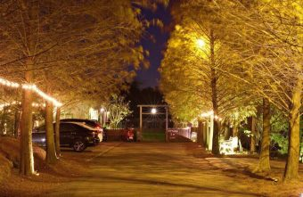 2019 02 13 230602 340x221 - MITAKA 3e CAFE龍貓夜景咖啡,夜裡的黃金森林好迷人,浪漫夕陽與美麗夜景盡收眼底