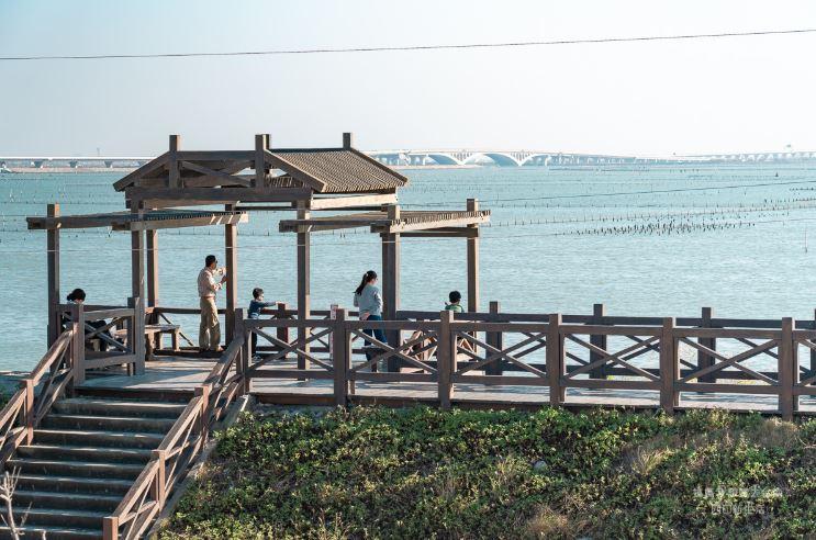 七股觀海樓地址交通資訊,360度景色台南外拍好去處