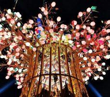 2020 02 22 112520 228x200 - 2020台灣燈會在台中~搭火車去后里逛台中燈會,森林園區好精彩,光之樹、聆聽花開永晝心、無人機秀、森林機械巨蟲秀!