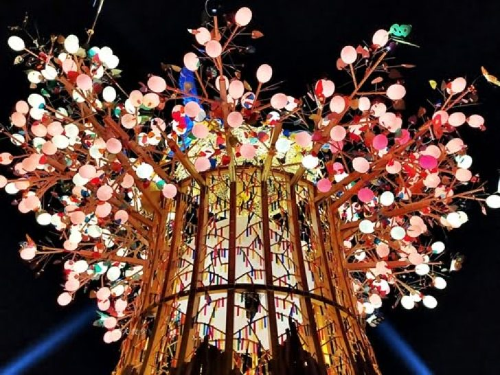 2020 02 22 112520 728x0 - 2020台灣燈會在台中~搭火車去后里逛台中燈會,森林園區好精彩,光之樹、聆聽花開永晝心、無人機秀、森林機械巨蟲秀!