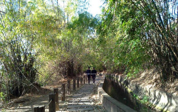 2021 01 20 074101 728x0 - 知高圳步道。台中熱門親子景點,輕鬆好走親子步道,好漢坡雪蓮登山步道